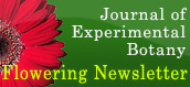 Journal of Experimental Botany - Flowering Newsletter
